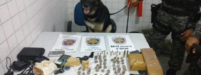 Cão Ninja fareja drogas e suspeitos são presos em Caruaru